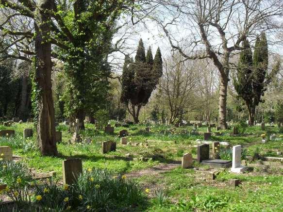 church-in-the-wood_hollington_hastings_churchyard