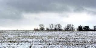 elevation-station-barren-field